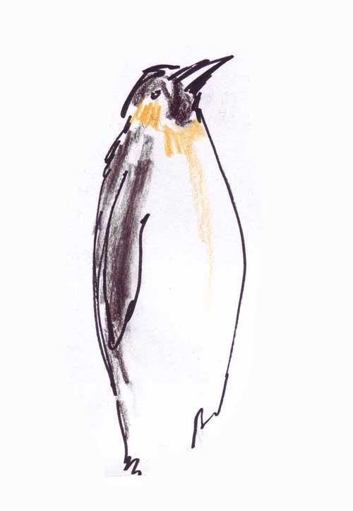 pinguin_500